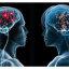 Функции человеческого мозга