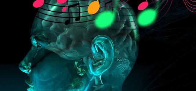 Музыкальное образование повышает способности мозга  к обучению